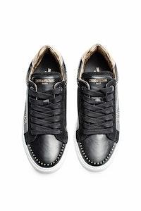 Zv1747 Stars Sneakers
