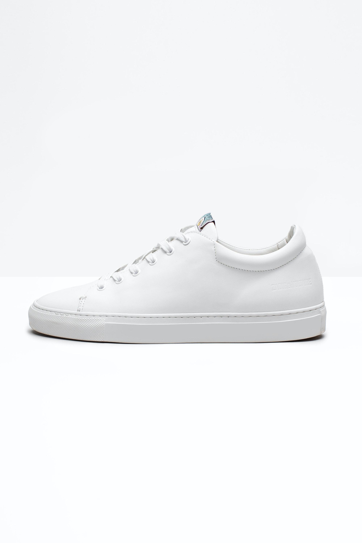 Sneakers Fred Men