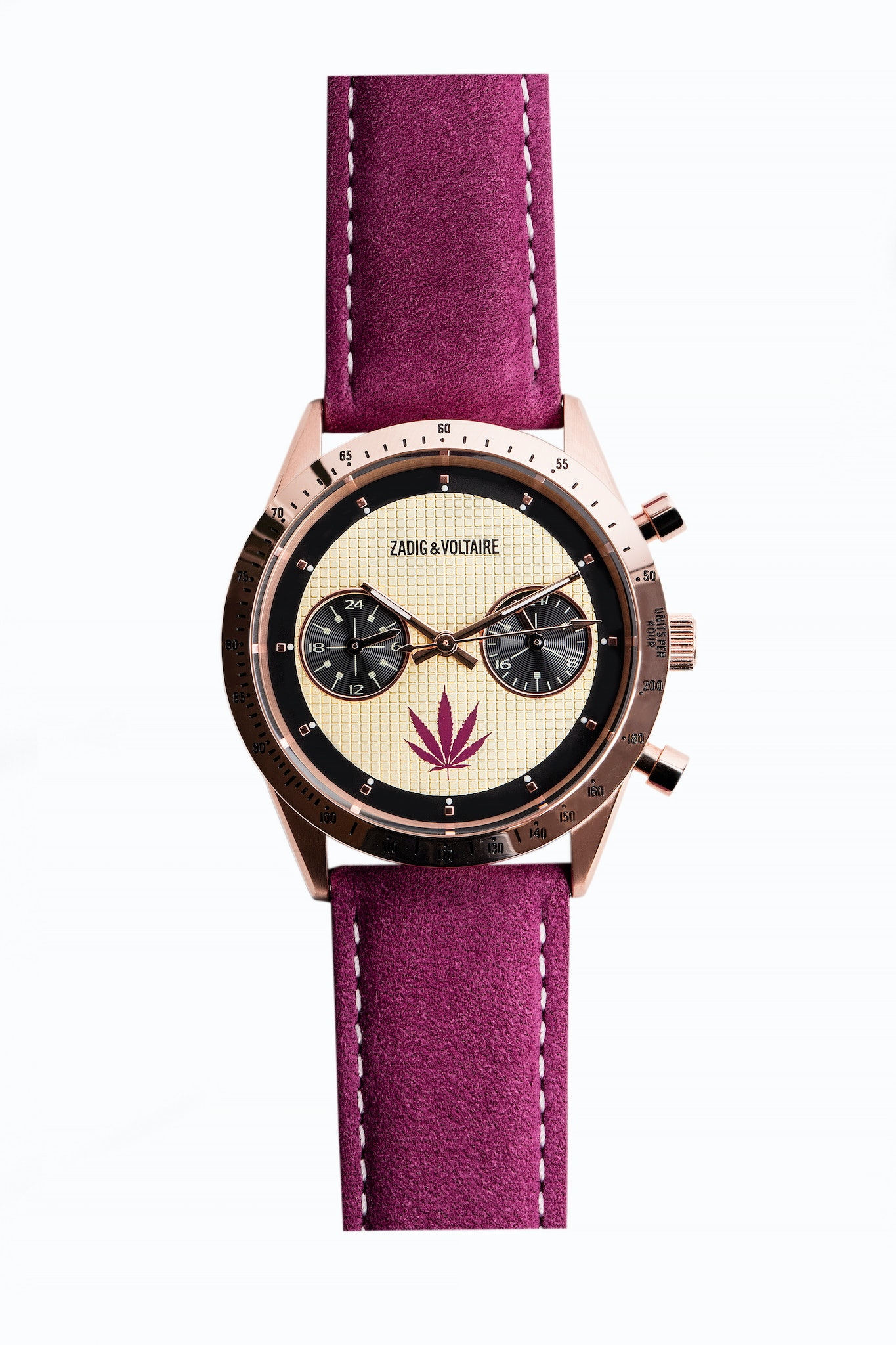 Master Purple 36 Watch